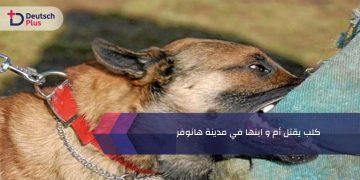 كلب يقتل أم و ابنها في مدينة هانوفر